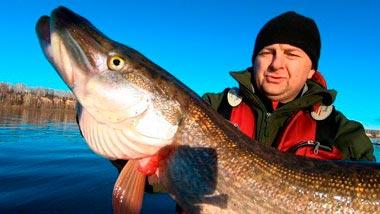 Категория Рыбалка