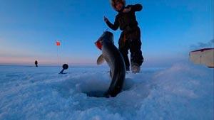 Канал Cool fishing/Hot fishing