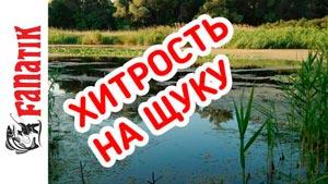 Канал Fishing with Yuri Petrash