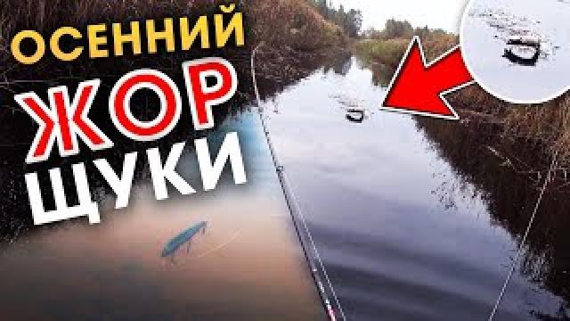 Канал Лови с нами! рыбалка в Беларуси