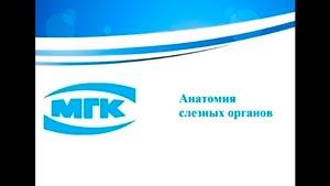 Канал Московская Глазная Клиника