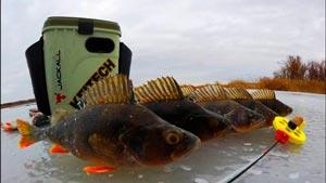Канал NRG FISHING рыбалка