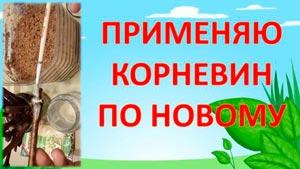 Канал Roman Burov