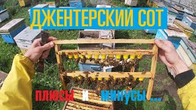 Канал Тамбовский пчеловод: пасека Марьиных