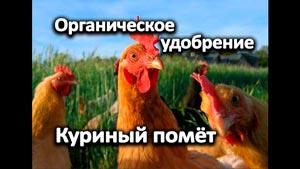 Канал УМНОЕ ХОЗЯЙСТВО